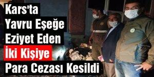 Kars'ta Yavru Eşeğe Eziyet Eden İki Kişiye Para Cezası Kesildi