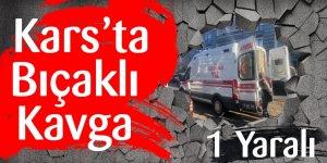Kars'ta Bıçaklı Kavga: 1 Yaralı