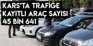 Kars'ta trafiğe kayıtlı araç sayısı 45 bin 641'i buldu.