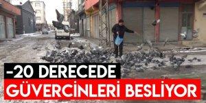 Eksi 20 Derecede Güvercinleri Besliyor