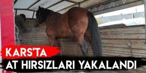 Kars'ta At Hırsızları Yakalandı