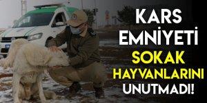 Kars Emniyeti Sokak Hayvanlarını Unutmadı!