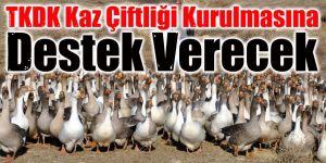 TKDK kaz çiftliği kurulmasına destek verecek