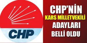 CHP'nin Kars Milletvekili Adayları Belli Oldu